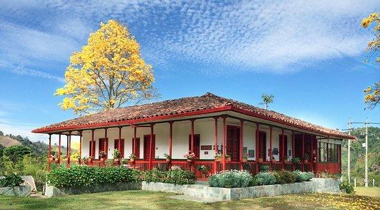 Salento Quindio Coffee Tour Colombia Travel Coffee Axis
