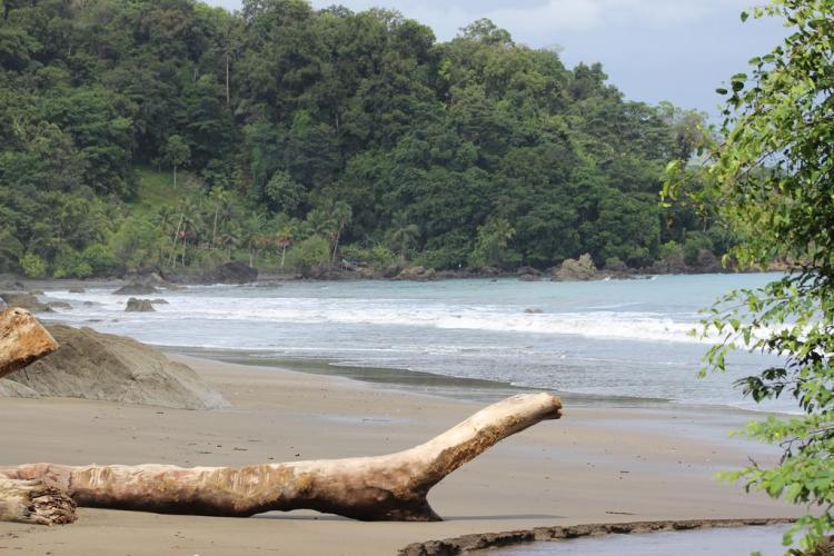 Landscape - Nuqui Choco - Colombian Pacific - Tourist Plans - ColombiaTours