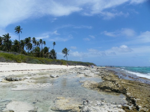Playa - Tour Johnny Cay - San Andres Islas - ColombiaTours.Travel
