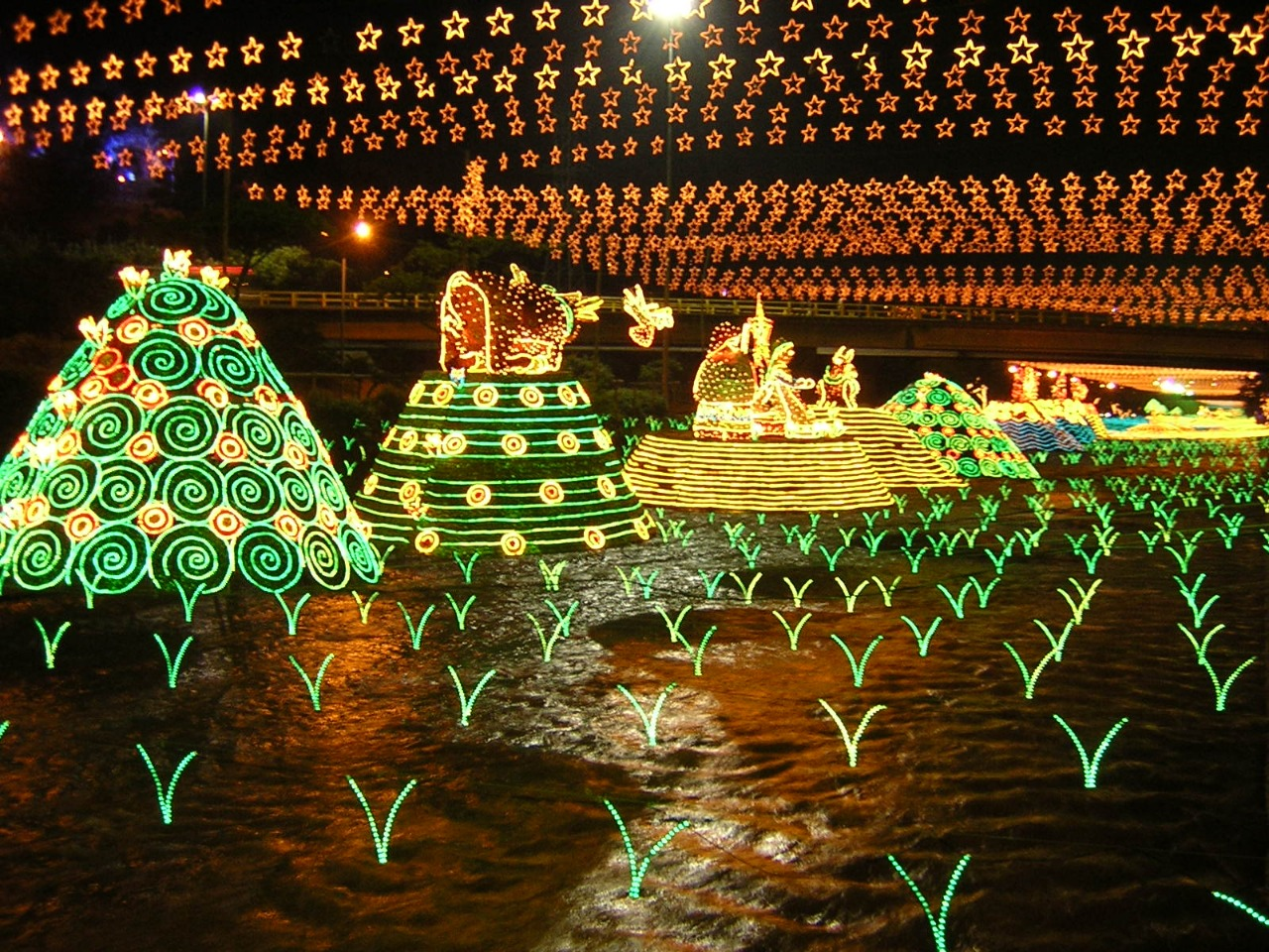 Medellin Lights Tour - Christmas Lighting - Colombia - Tourist Plan - Christmas Plans in Colombia