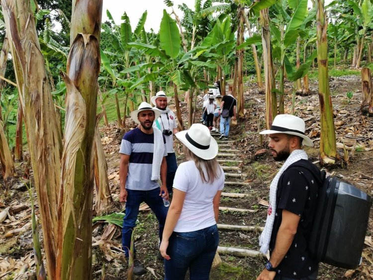 Tour del Café Altagracia - La Divisa de Don Juan - Eje Cafetero - Colombia Turismo - Eje Cafetero Colombiano
