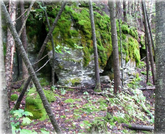colonial quarry mindemoya outcrop