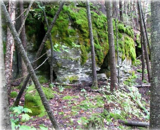 colonial quarry mindemoya outcrop