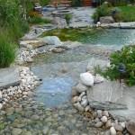 River Rock Pond Bottom