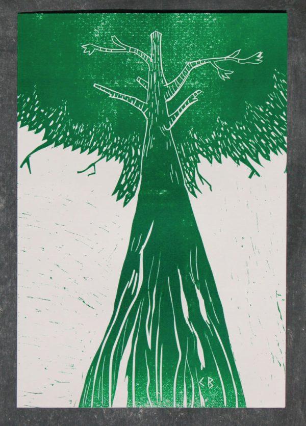 affiche gravure arbre