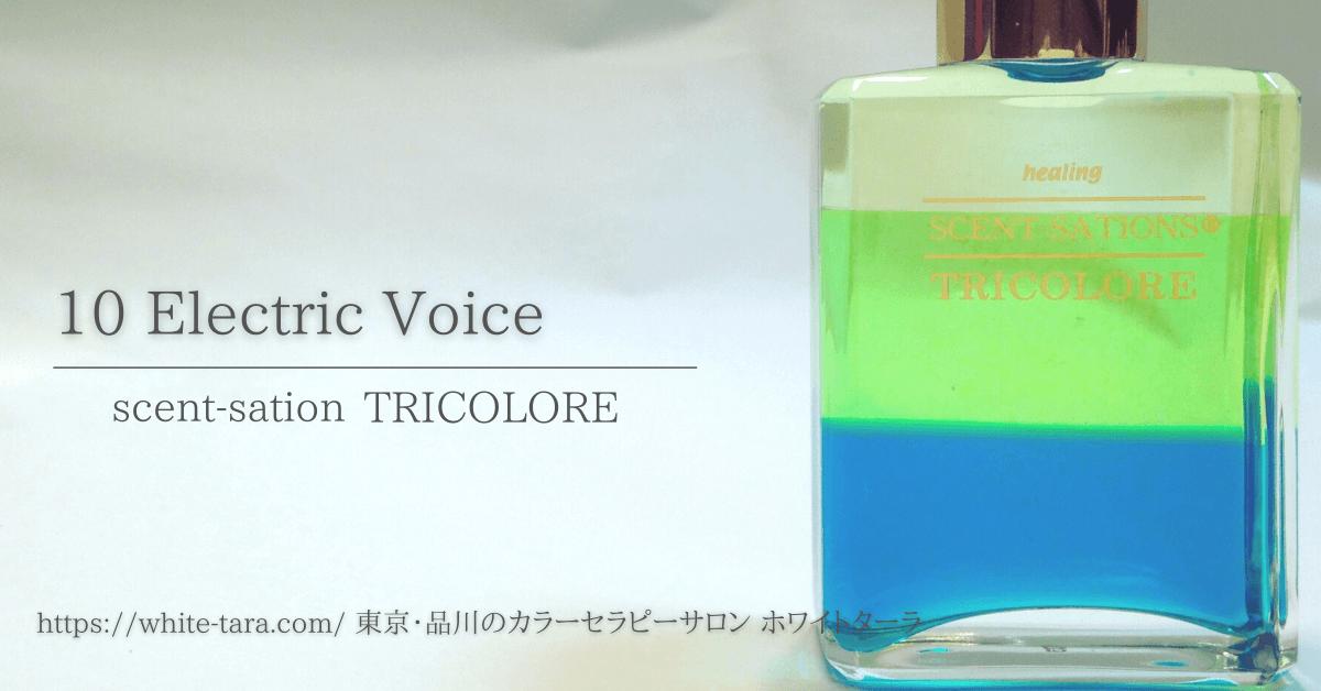 「エレクトリックボイス」センセーショントリコロール10 カラーセラピーボトルの意味と解説