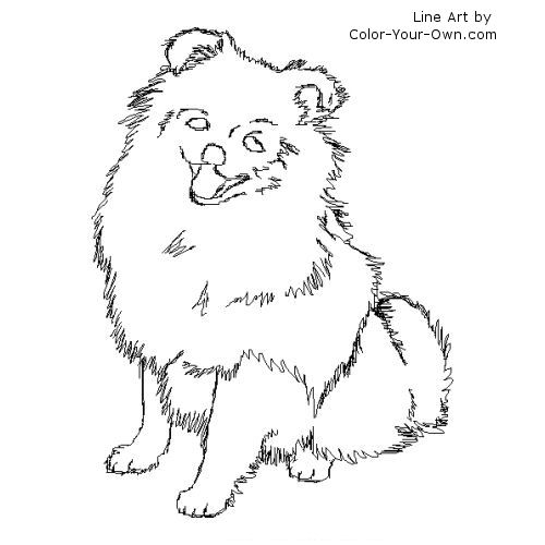 Back To The Coloring Pages Index