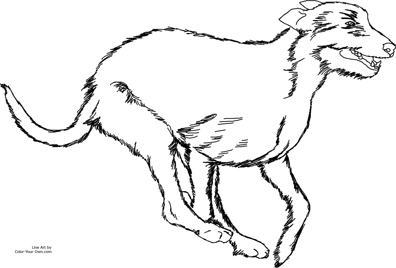 Running Irish Wolfhound Dog Coloring Page