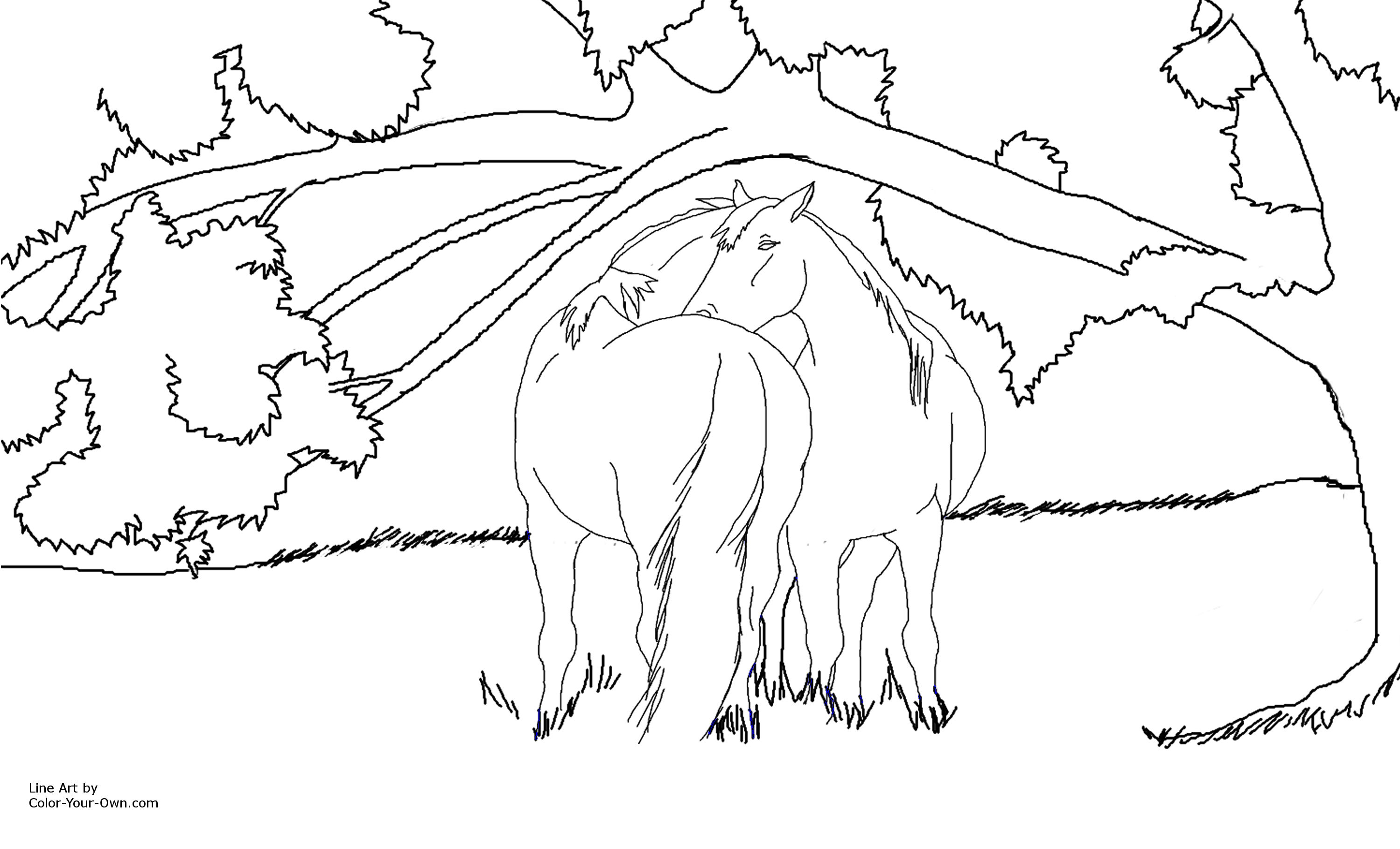Horses Under A Shade Tree Coloring Page
