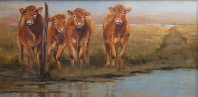 Hey Buds $1074 (12x24 Oil on linen panel). Nothing, I mean nothing gets past this crew. They know every vehicle that goes by and they have their favorites. As the evening sun sets, they wait for their absolute favorite. They know the sound of it and I don't doubt they can hear the key click in the ignition from a mile and a half down the dirt road. Yep, it's the hey truck and that's the one they love the most.