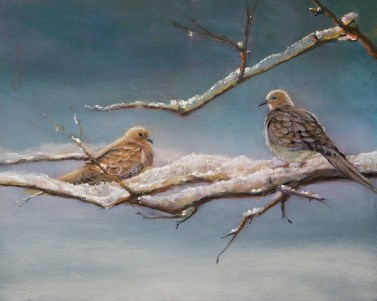 Early Snow SOLD (16x20 dry pastel) our mourning doves; they visit every year.