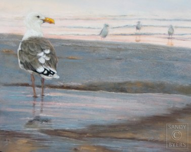 Gully and the Jeepers SOLD (11x14 dry pastel). can't you just imagine them getting ready for their sunset gig at the beach? soon all the little sandpiper girls will be gathering around oohing and ahhing and shaking their tail-feathers.