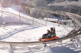 winter roller coaster