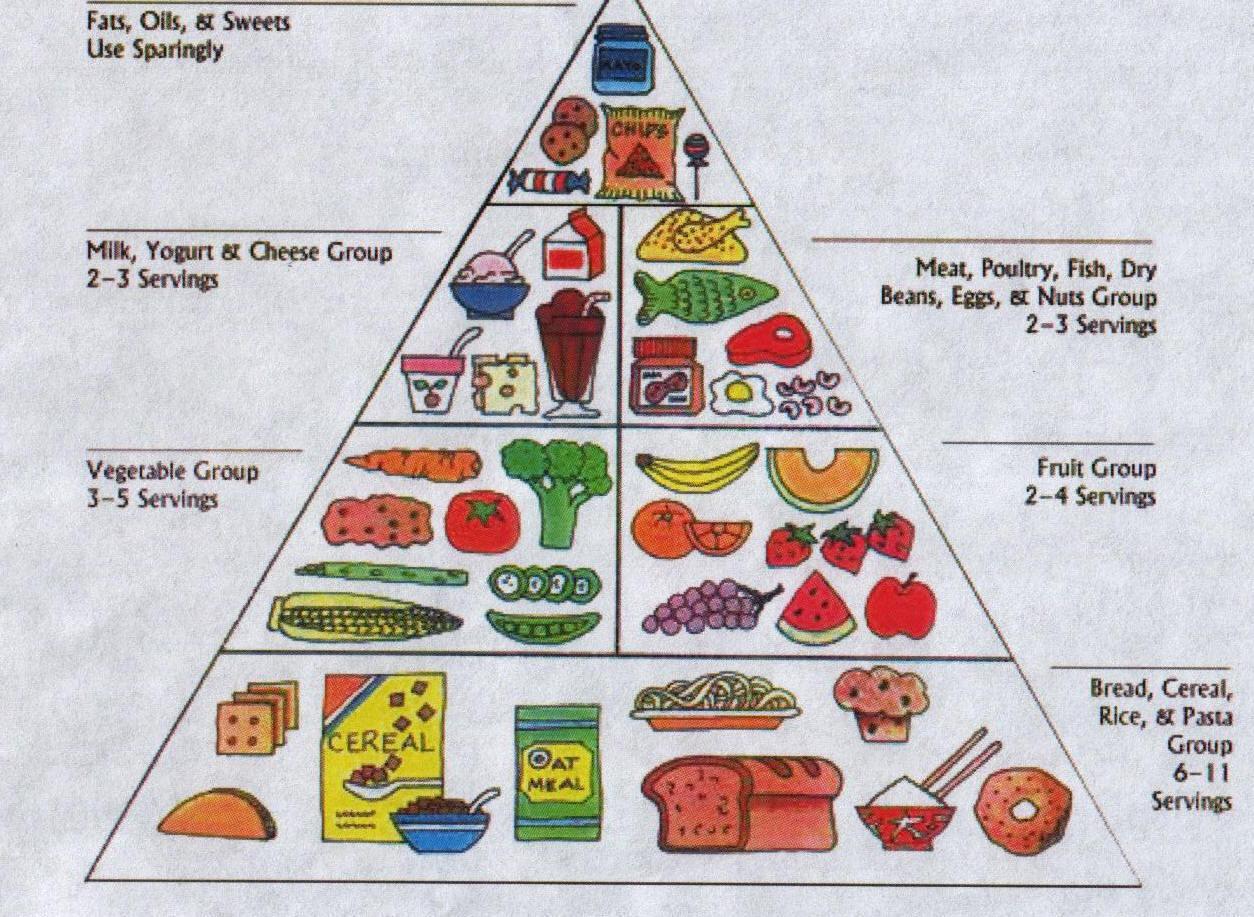 Good Foods For Good Health Webquest