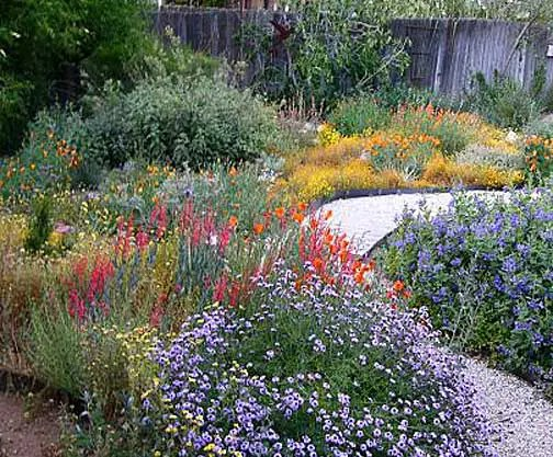 Landscape Design Ideas Xeriscape