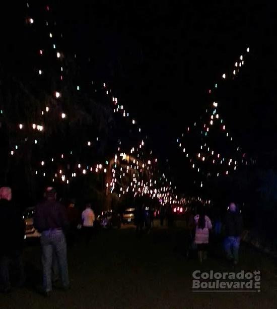 California Christmas Tree Cedrus Deodara: The Story Of Altadena Christmas Tree Lane