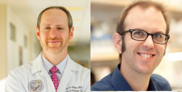 Pollyea and Pietras earn endowed chairs in hematology research