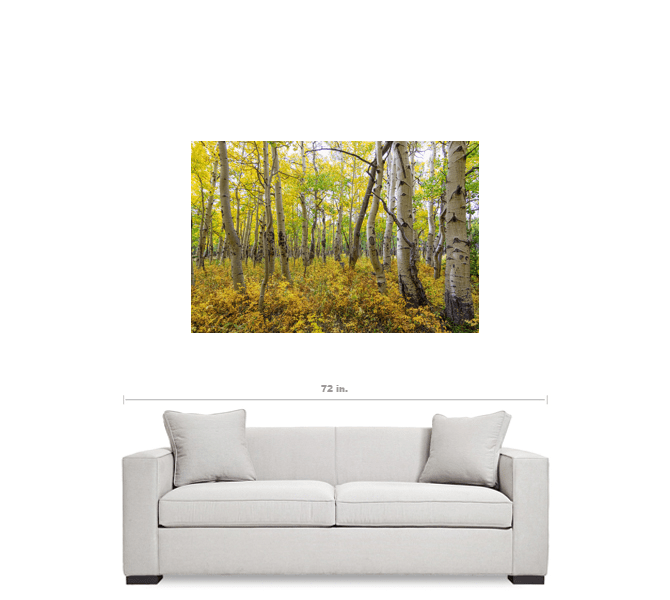"Golden Forest Bed 32""x48""x1.25"" Premium Canvas Gallery Wrap Art"