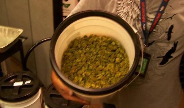 bucket of buds
