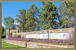 homes for sale in grant ranch littleton