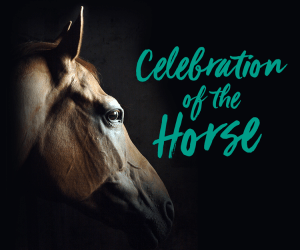 Celebration of the Horse @ Celebration of the Horse |  |  |