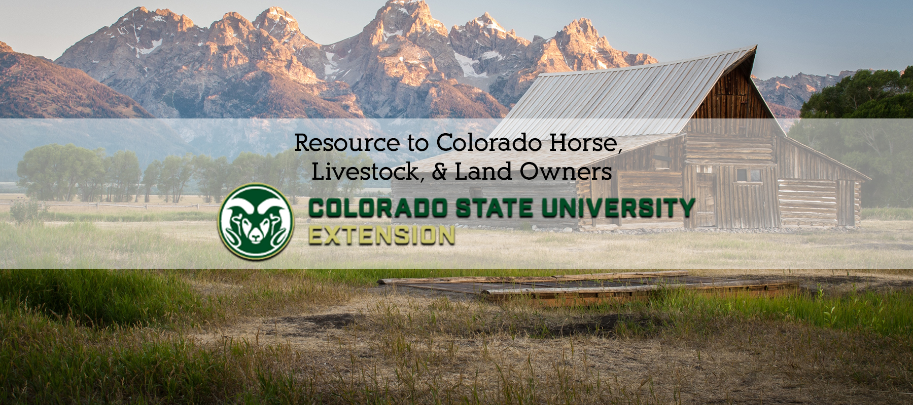 CSU Extension - Resource for Colorado Horse Owners
