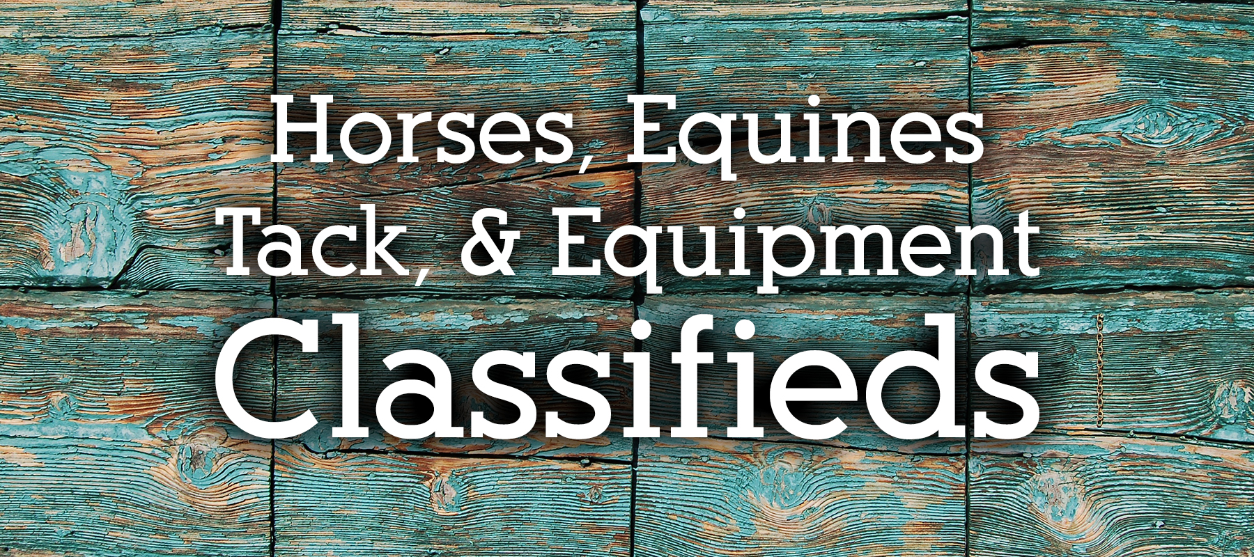 Classifieds for Horses, Equines, Tack, and Equipment in Colorado