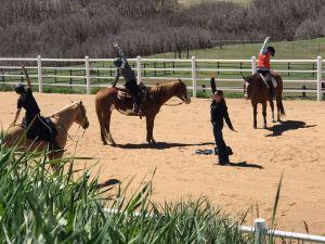 Equestrian Yoga @ Kiana Creek Equestrian Center @ Equestrian Yoga @ Kiana Creek Equestrian Center |  |  |