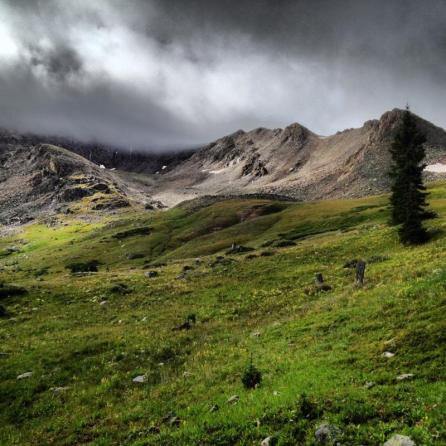 Misty morning in the Tenmile Range. Look up from mushroom hunting every once in a while!