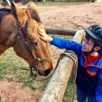 Sylvan Dale Ranch ~ Colorado Vacation That Will Capture Your Heart