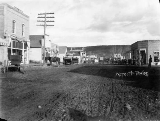 Cedaredge - View of Cedar Mesa Street shows storefronts, buggies, horses, pedestrians, and signs The Hardware Co. Stewart Realty Com and Bank 1880s