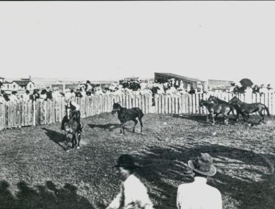 Deer Trail - Hosted the first rodeo exhibition on July 4, 1869.