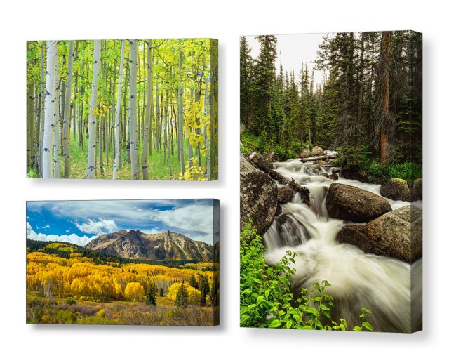 colorado canvas art