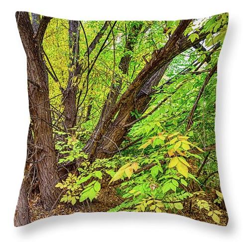 As The Seasons Turn Throw Pillow