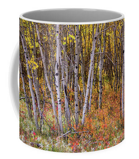 Wonderful Woods Wonderland Coffee Mug