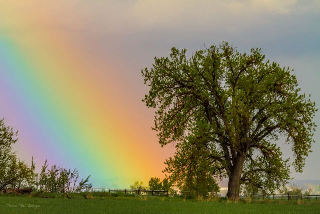Rainbow From Heaven Art Prints