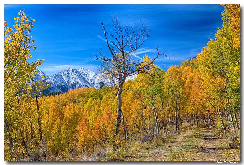 Colorado Autumn Back Country View