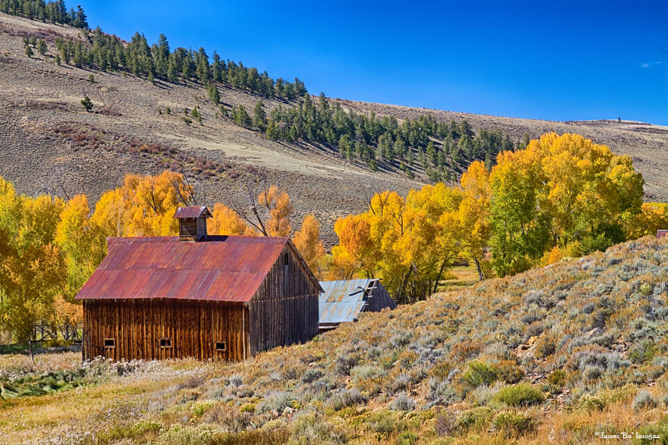 Colorado Rustic Rural Barn with Autumn Colors Art Prints