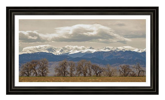 Cottonwood Trees Rocky Mountain View Framed Print