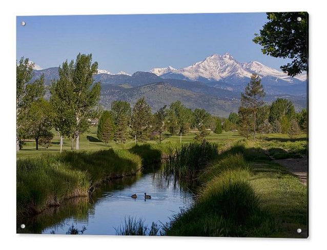 A Ducky Colorado View