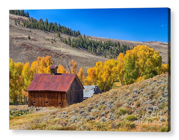 Colorado Rustic Rural Barn With Autumn Colors Acrylic Print