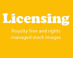 Rocky Mountain Stream Licensing Royalty free and rights managed stock images