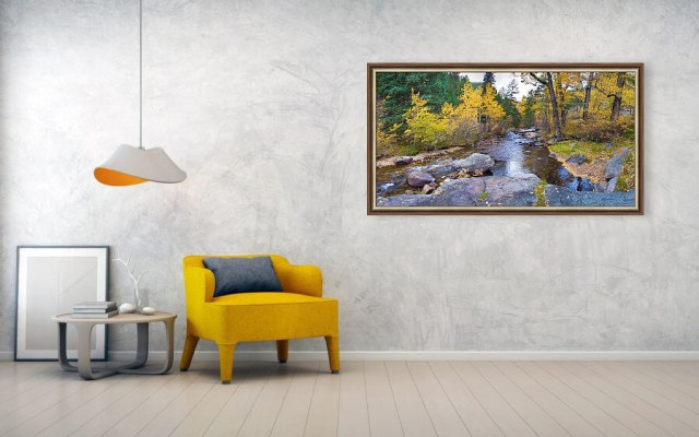 Special Place In The Woods Framed Print