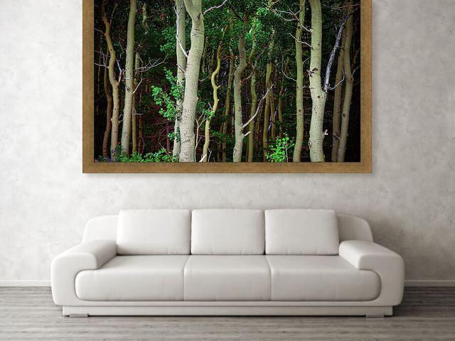 Deep Wilderness Forest Art Print