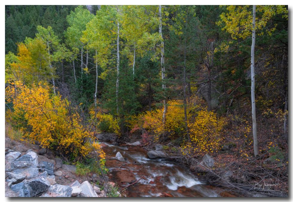 Beautiful Mountain Stream Paradise Art Prints