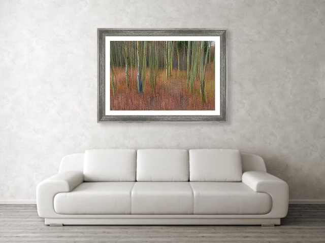 Soothing Wilderness Wonder Framed Print