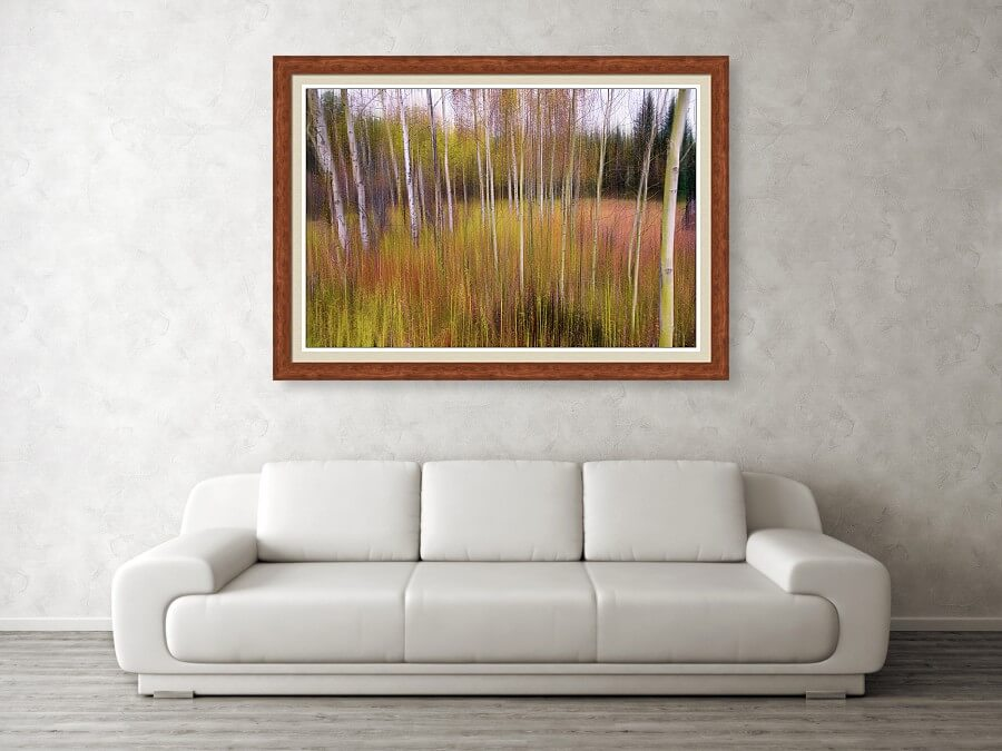 Dreamy Wilderness Framed Print