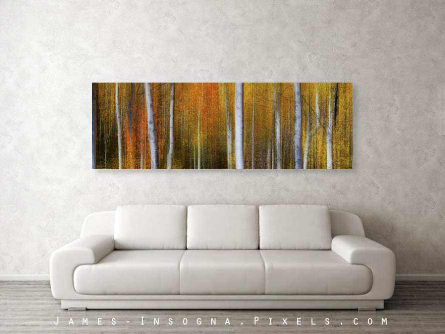 Forest Color Burst Modern Abstract 72x24 Canvas Print