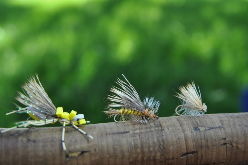 Foam hoppers, Stimulators and Elk Hair Caddis flies are highly buoyant and work well as an edible strike indicator in a hopper/dropper setup. Photo by Jerry Neal/CPW