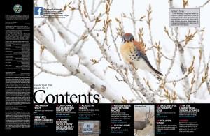 Mar-Apr 2016 contents